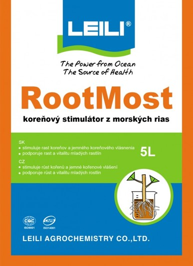 RootMost